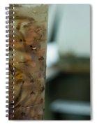 Atlantic Salmon Stocking Spiral Notebook