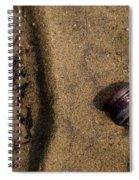 Atres 4 Spiral Notebook