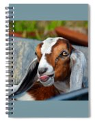 Attitude Is Everything Spiral Notebook