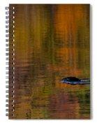 Atumn Reflections Spiral Notebook
