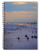 August Beach Morning With The Sea Gulls Spiral Notebook