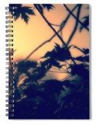 August Memories Spiral Notebook