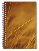 Aurum Spiral Notebook
