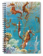 Australian Seahorses Spiral Notebook