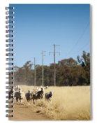 Australian Sheep Spiral Notebook