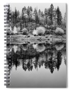 Autumn Reflection Black And White Spiral Notebook