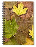 Autumm Is Coming 2 Spiral Notebook