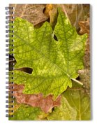 autumm is coming 3 - A carpet of autumn color leaves Spiral Notebook