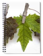 autumm is hanged out - Autumn color leaves Spiral Notebook
