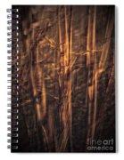 Autummn's Promise 13 Spiral Notebook