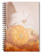 Autumn Abundance  Spiral Notebook