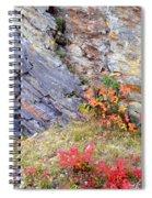 Autumn And Rocks Spiral Notebook