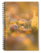 Autumn Ash Leaves Spiral Notebook