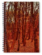 Autumn At Formby Woods  Spiral Notebook