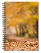 Autumn At Great Falls Spiral Notebook