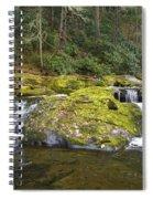 Autumn At The Falls Spiral Notebook