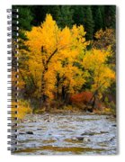 Autumn Beauty In Boise County Spiral Notebook