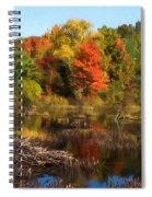 Autumn Beaver Pond Reflections Spiral Notebook