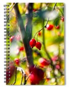 Autumn Berries  Spiral Notebook