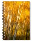 Autumn Birches Spiral Notebook