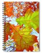 Autumn Bliss Spiral Notebook