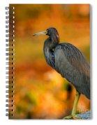 Autumn Blue Heron Spiral Notebook