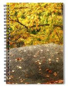 Autumn Boulder And Leaves Spiral Notebook