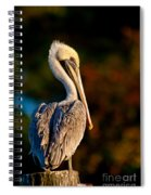 Autumn Brown Pelican Spiral Notebook