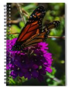Autumn Butterfly Spiral Notebook