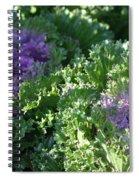 Autumn Cabbage Spiral Notebook