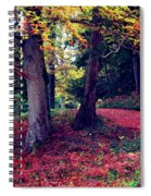 Autumn Carpet In The Enchanted Wood Spiral Notebook