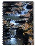 Autumn Cascade Spiral Notebook