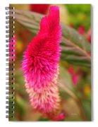 Autumn Cockscomb  Spiral Notebook