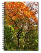 Autumn Color At Old Woman Creek 2 Spiral Notebook