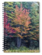 Autumn Color Painterly Effect Spiral Notebook