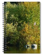 Autumn Colors 1 Spiral Notebook
