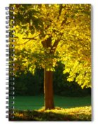 Autumn Colors 10 Spiral Notebook