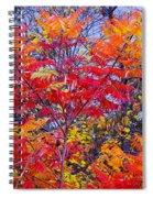Autumn Colors - 113 Spiral Notebook