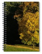 Autumn Colors 7 Spiral Notebook