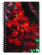 Autumn Colors Early Spiral Notebook