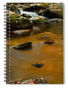 Autumn Colors On Little River Spiral Notebook