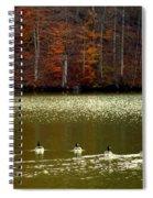Autumn Cove Spiral Notebook