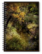 Autumn Creek Spiral Notebook