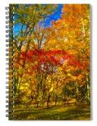 Autumn Cul-de-sac - Paint Spiral Notebook