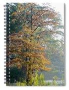 Autumn Cypress Spiral Notebook