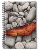 Autumn Epilogue Spiral Notebook
