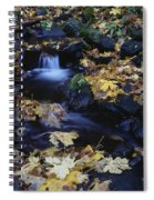 Autumn Fall Colors Starvation Creek State Park Spiral Notebook