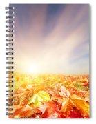 Autumn Fall Landscape Spiral Notebook