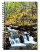 Autumn Falls  Spiral Notebook