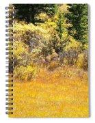 Autumn Fire In The Grass Spiral Notebook